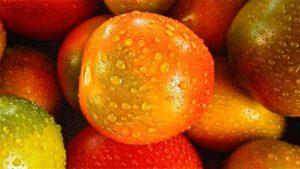 Multicolored Grape Tomatoes