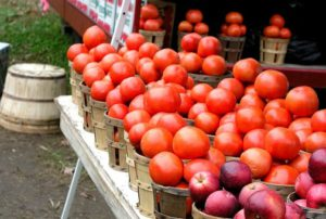 Tomatoes at a Farmers Market